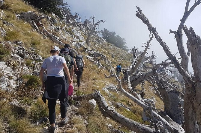 Hiking tour of South Albania in five days, Tirana, Albânia