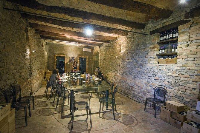 Barolo and Barbaresco wine tour, Langhe-Roero y Monferrato, ITALIA