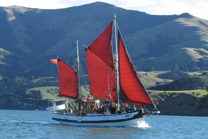 Sail in the crater of an extinct volcano with the rarest dolphins in the world. Long encounters and beautiful scenery. 3 hour trip on a quiet sailboat in nature. You can also see penguins, seals and albatross. The Fox II is a vintage sailboat, almost 100 years old! Made from wood, 2 masts and 6 sails. It is the oldes ketch in New Zealand. Has been in movies, TV shows and is famous all over the world. Visit amazing sea caves, cliffs, waterfalls and venture out into the pacific on this safe, quiet, truely memorable experience. Eco friendly, with minimal carbon footprint. Make the choice for a better future.