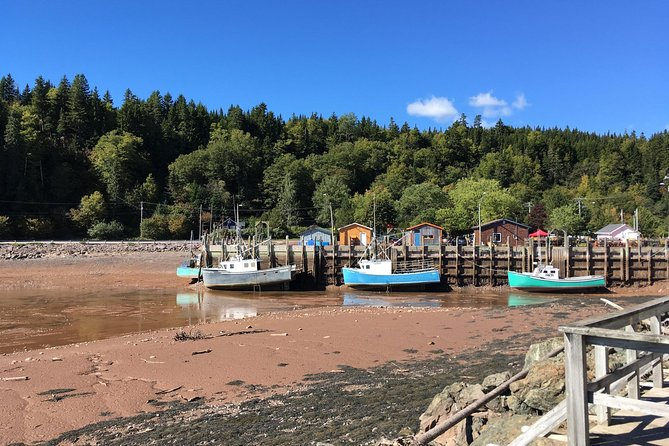 This tour is 6+ hr long tour for a 6-passenger van. There is some easy walking involved on this tour, so please wear comfortable shoes. Entry fee to Fundy Trail Parkway is extra (9$ per person).