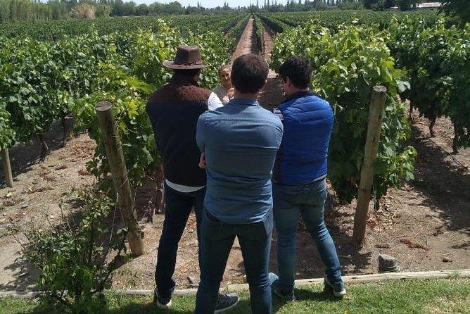 Amigos de El Enemigo, Mendoza, ARGENTINA