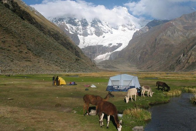 Huayhuash Trek is one of the most wonderful trekkings in the world, so popular being eaasy access colorful lakes splendour mountains, magnifique landscapes, so Huayhaush is one of the jewel of the world on trekking circuits