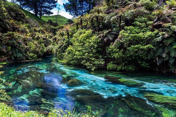 Take a Tour which is Good for your soul.<br>Visit Nature & Natural Places in New Zealand.<br>Book with us for a Flexible , affordable Private Tour.<br>Take your break wherever you want, No Sharing or Group Tour.<br>Enjoy your Privacy and Family Tour Time :)