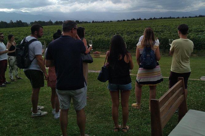 Atardecer de Uco - Wine Tour, Mendoza, ARGENTINA