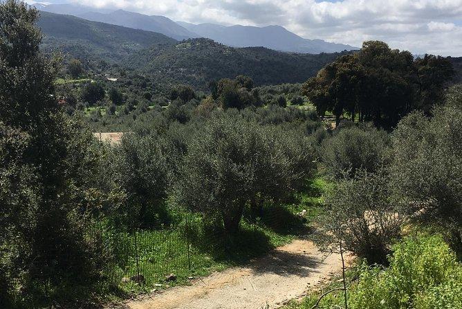 Taste of Cretan Nature, ,