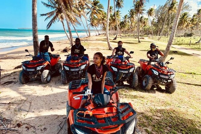 Discover the beauty of riding an ATV or Four Wheelers where you will be able to enjoy both nature and culture to another level, you will ride by the virgin beach and thousands of palm trees with the green mountains in which the view will leave you astonished and you get to swim for a bit. Follow by a 360-degree panoramic view at Montana Redonda 1000 feet high famous mountain where you will enjoy a meal looking at birds flying, and a green spectacular view of nature to it's best. No better ATV tour, than a half-day ATV tour with Tio Pepe book now and have your best riding experience<br><br>