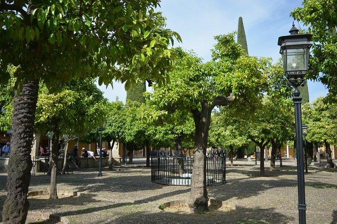 Recorrido privado de 2 horas por Córdoba, Cordoba , ESPAÑA