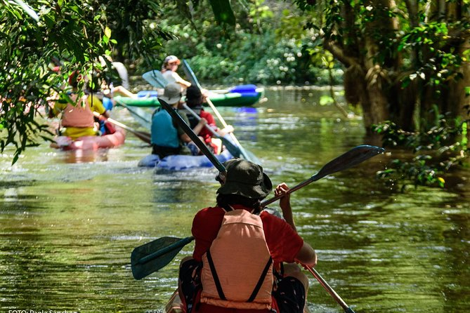 Experiencias Amazonas, Bogota, COLOMBIA