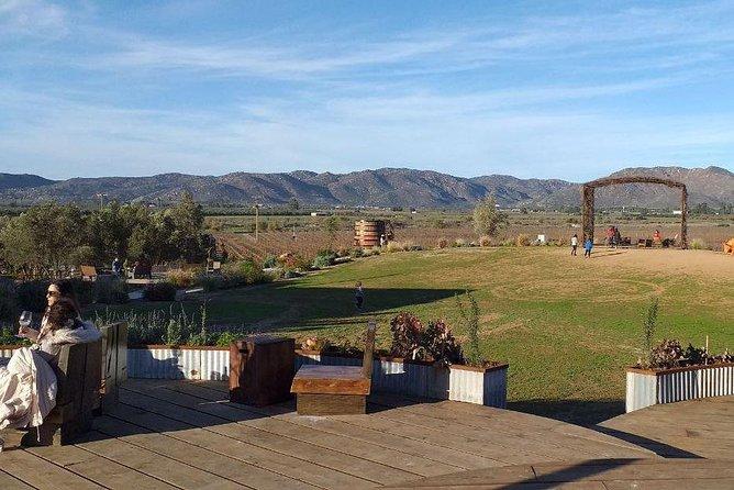 Valle de Guadalupe, Rosarito, MEXICO