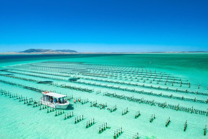 "How good does our boat look in this picture? You only visit this beautiful oyster farm on the 3hr long tour. You will up close see the vastness of the prime oyster growing area of the world famous Coffin Bay oysters. We motor the approximately 16km out to our oyster lease at the entrance to the Coffin Bay water way. We will certainly visit an oyster farm and explain about farming oysters and take the time to pluck fresh ones to open and enjoy. 1 dozen oysters per person. Your tour guide will be the oyster farmer who will share knowledge about oyster farming, its history and explore the Coffin Bay water ways. You will experience the beauty of the pristine coast line, but with more time to spot the seals at ""The Brothers"" islands and slow to enjoy the dolphins if they appear along the way. Travel the coastline of Coffin Bay national park. We require minimum 2 people in total booked on this tour for it to proceed."