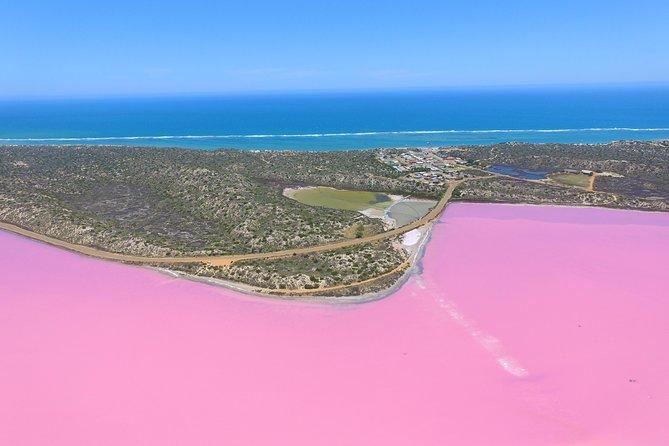 MÁS FOTOS, Pink Lake + Abrolhos Islands Nature Tour