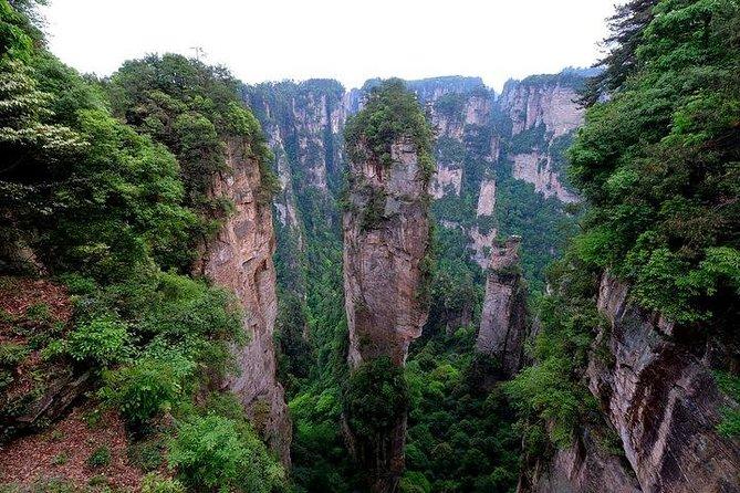 MÁS FOTOS, 4 Days Zhangjiajie Avatar Panorama Tour & Activities( Hand-picked Featured Inn)