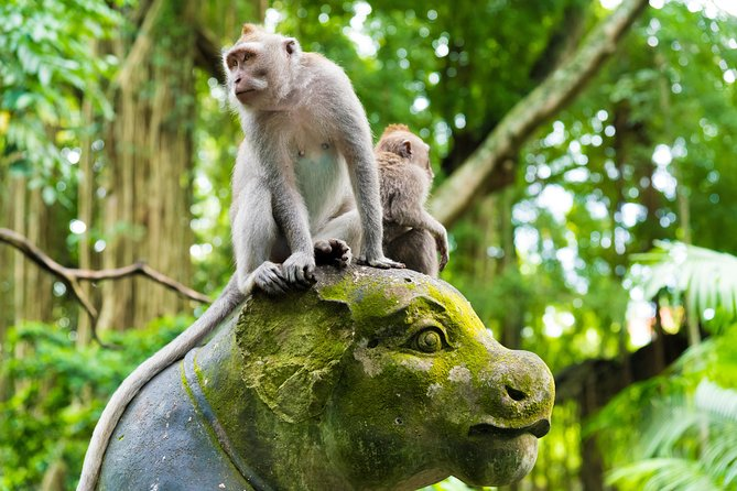 Private Tour: Ubud Highlights, Seminyak, Indonésia