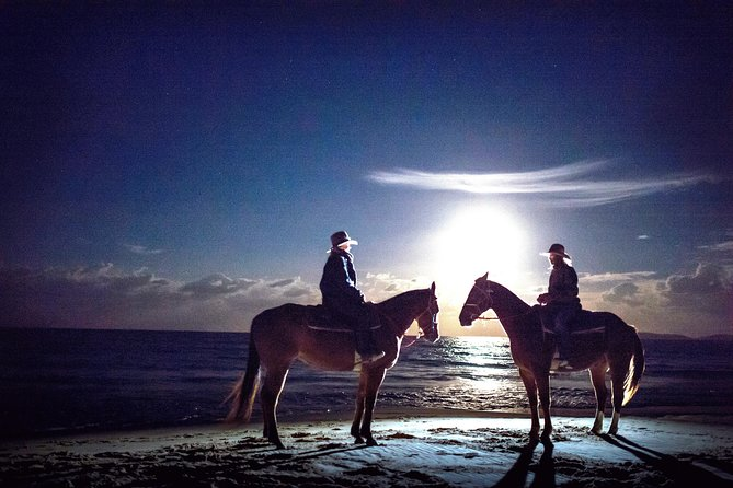 A truly unique experience watching the sun set, then watching as the full moon rises over the ocean whilst riding a horse along the stunning setting of Rainbow Beach. Departure time is 45 minutes before sun set and does vary each month according to the time of year.