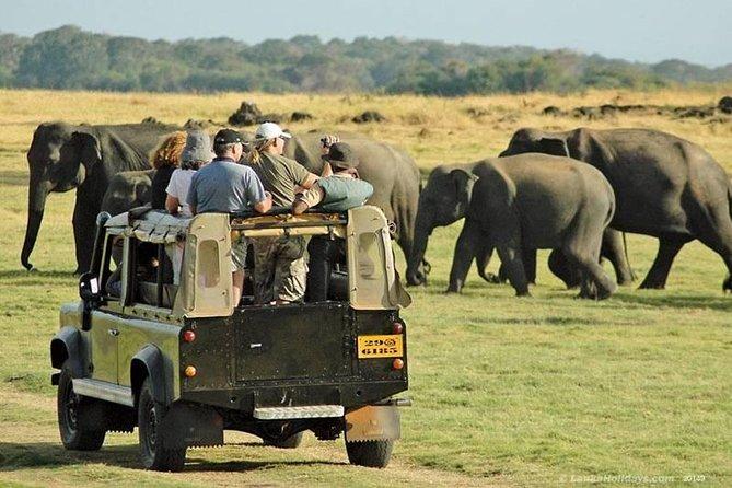 Evening private Safari at Udawalawe National Park by Jeep, Parque Nacional Yala, SRI LANKA