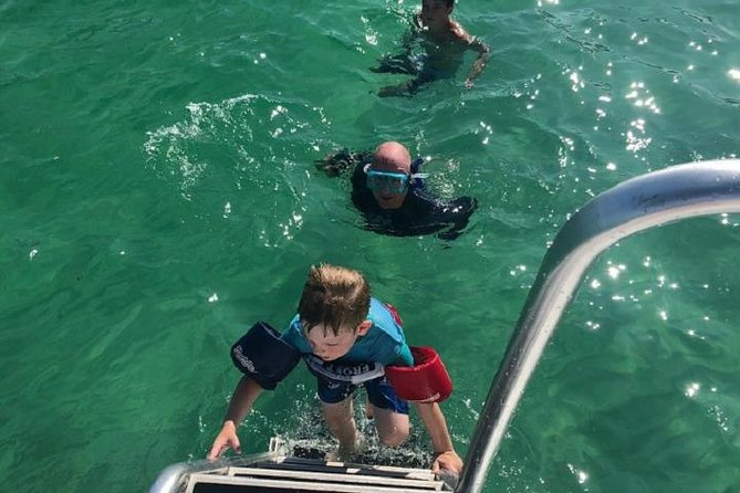 Shell Island Snorkel & Dolphin Catamaran Cruise in Panama City Beach, Panama City Beach, FL, ESTADOS UNIDOS