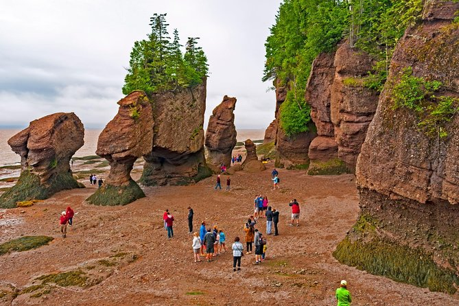 MÁS FOTOS, Best of Fundy with Hopewell Rocks
