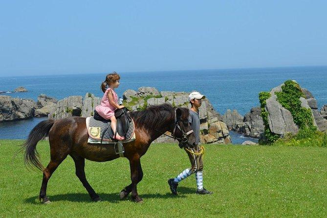 国立公園になっている種差海岸の天然芝生地で水平線と並んでできる乗馬体験です。<br>乗馬経験のある方はいつもとは違った目線で、芝や潮の香、波の音、潮風を体感しながら、初心者の方でも引馬なので安心して楽しめます。