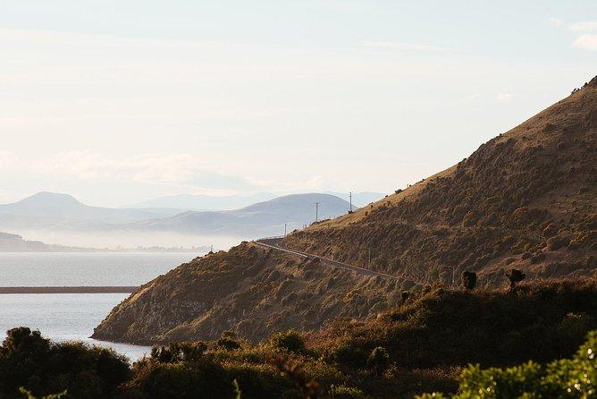 Wildlife Cruise & Larnach Castle Tour, Dunedin y la peninsula de Otago, New Zealand