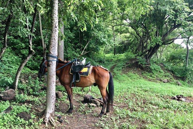 Horseback Riding Private Tour, Leon, NICARAGUA
