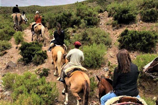 Cabalgata y Asado en el Pedemonte Mendocino., Mendoza, ARGENTINA