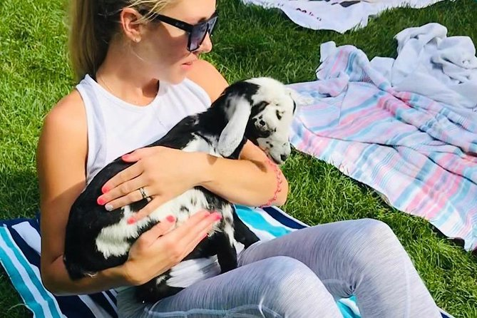 Baby Goat Yoga class, Cape Cod, MA, UNITED STATES