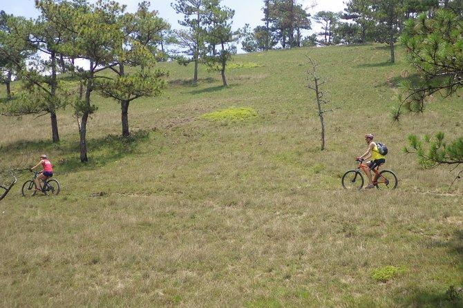 Bike On Dragon's Back In Dalat, My Son, VIETNAM