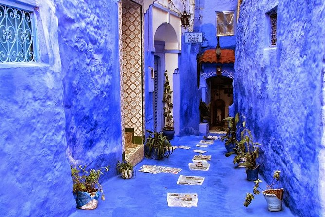From FES to CHEFCHAOUEN day tour - BEST local experience | Shared Group Tour, Fez, MARRUECOS