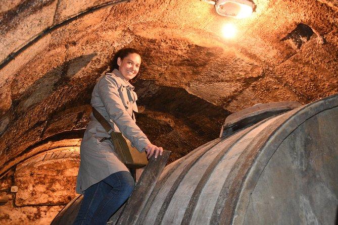 Medio día con almuerzo: Recorrido vinícola en La Rioja, Pamplona, ESPAÑA