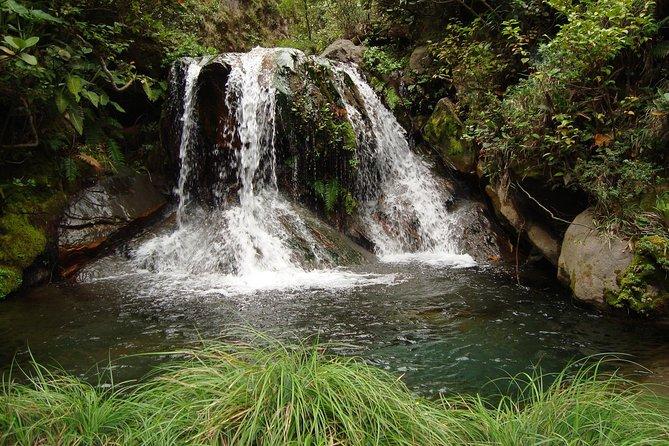 Rincón de la Vieja 4 Waterfall Hike, Liberia, COSTA RICA