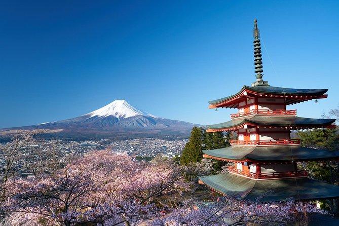 Scenic Spots of Mt Fuji and Lake Kawaguchi 1 Day Bus Tour, Tokyo, JAPON