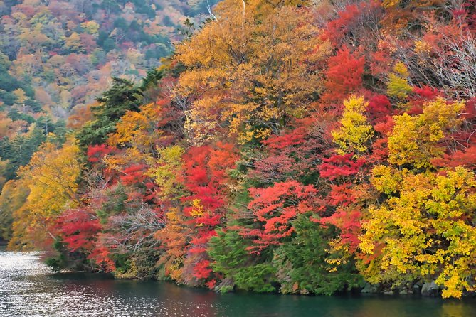 Nikko Scenic Spots and UNESCO Shrine - Full Day Bus Tour from Tokyo, Tokyo, JAPON
