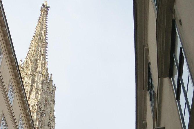 MÁS FOTOS, La catedral de San Esteban con SaFu - Símbolo viejo descubierto de nuevo