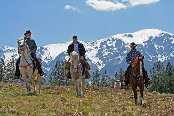 MORE PHOTOS, Horse riding experience from Bansko