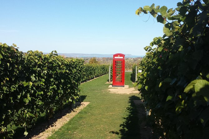 Instagramable Annapolis Valley Wine Tour, ,
