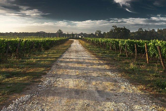 Private Custom Niagara Falls, Canada Winery Tour from Buffalo,NY, Buffalo, NY, ESTADOS UNIDOS