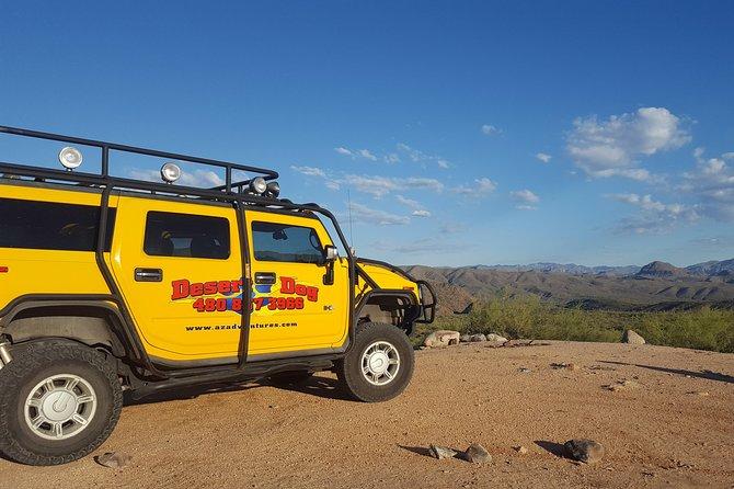Sonoran Desert Hummer Night Tour and Critter Hunt Scottsdale/Phoenix, ,