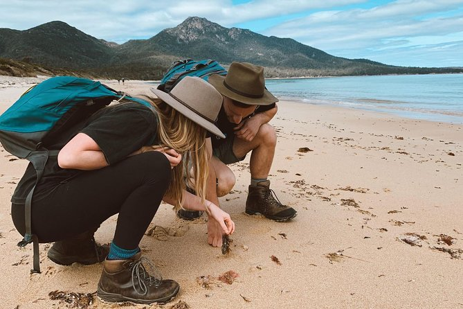 On our Freycinet Walking Tour, you'll have the opportunity to kick off your shoes and enjoy a cuppa on the squeaky shores of Wineglass Bay, stride empty white beaches to hidden bays for a gourmet picnic lunch, before conveniently boarding a boat from the depths of the peninsula to retrace your sandy steps across the water.