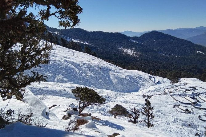 This winter you will enjoy unforgettable tour days. Chopta is also called 'The Mini Switzerland' in India. Almost 18 Km snow valley both side of the Chopta peak. Shopta is also famous for snow trekking.