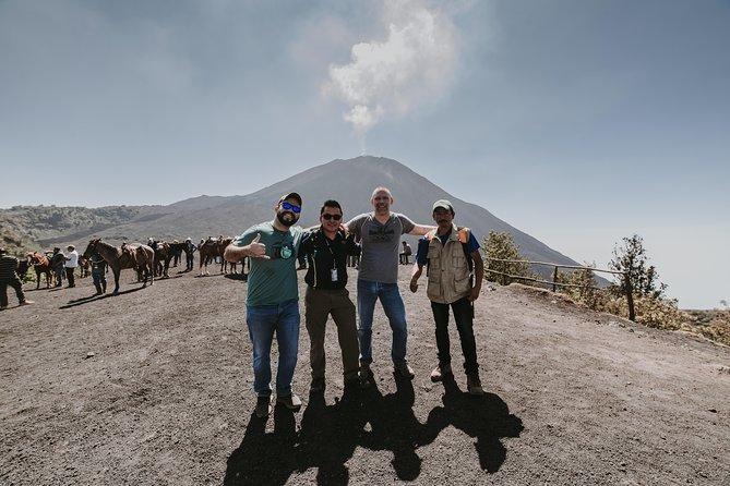 PACAYA VOLCANO, Shore Excursion in Guatemala., Puerto Quetzal, GUATEMALA