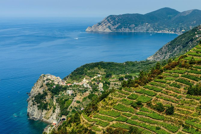"Enjoy the Cinque Terre region with the best views from the water, and a stop in Pisa to see the famous sites. Your guide will drive you to Riomaggiore, Manarola, Vernazza and Monterosso. Enjoy a wine tasting of the famous wine ""Sciacchetrà,"" a typical DOC wine from Cinque Terre vineyards. The driver will be waiting in Monterosso, to pick you up and drive back to Pisa, where you will stop in ""Miracle Field"", the most famous square with the ""Leaning Tower,"" the Duomo and the Baptistery. The vehicle used is a Mercedes van which can hold up to 8 passengers for a full-day private excursion."