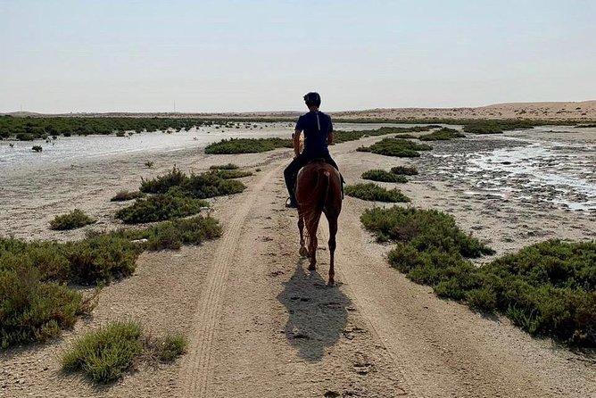 Mangroves ride, Ajman, EMIRATOS ARABES UNIDOS