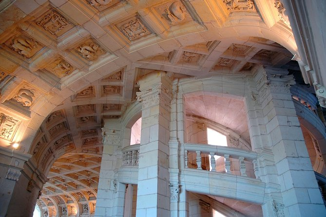 Day tour of Chateaux of Chambord, Blois, Cheverny & family organic winery, Loire Valley, FRANCIA