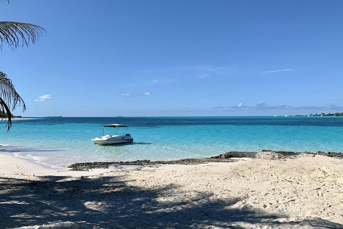 Come along and explore with us. This PRIVATE six hour tour includes Snorkeling at Pearl Island, private beaching at Rose Island and a swim with native sea turtles at Green Cay. Pricing is for up to 8 persons max. Water-Sodas-Snacks-Rum punch included.
