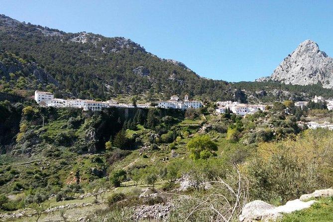 Day Trip from Jerez to White Villages, Cadiz, ESPAÑA