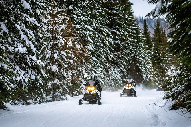 Mont-Tremblant Guided Snowmobile Tours, Mont-Tremblant, CANADA