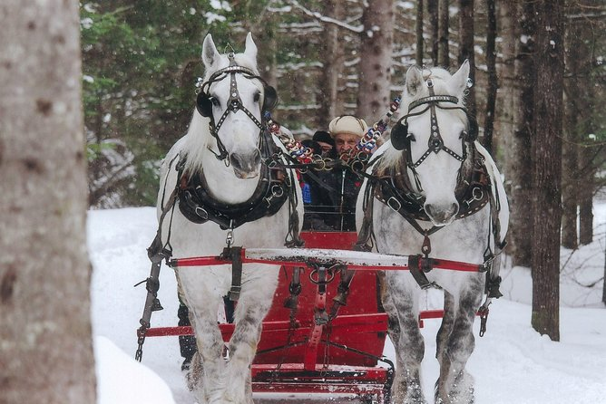 Small Private Sleighride, Mont-Tremblant, CANADA
