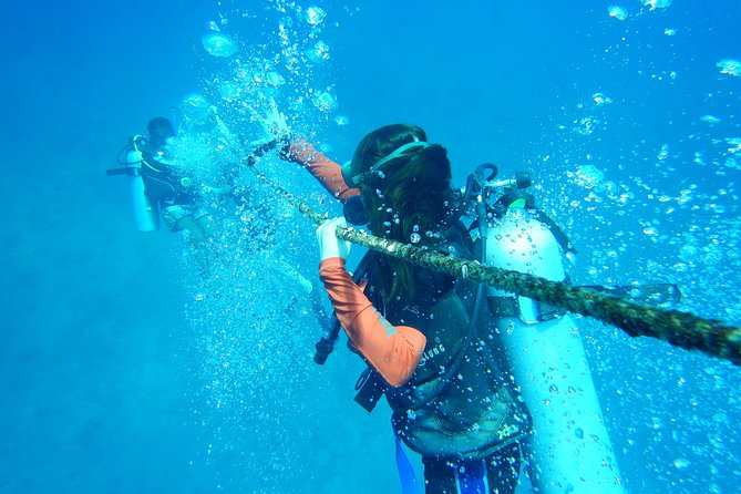Scuba diving allows you to explore entirely New World underwater, experience weightlessness through neutral buoyancy and expand your horizons. <br>During the dive you will get to see the colorful marine flora and fauna, get some close-up pictures and videos with the famous Nemo (clown fish) and other aquatic life.<br>DIVE ANDAMAN accomplishes this through personalized programs, costumer oriented service and professional training which results in happy customers who are eager to come dive with us again building long-lasting friendships. :)
