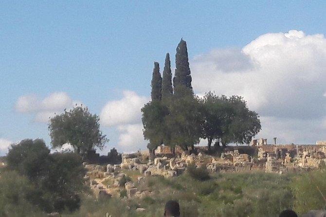 One Day trip meknes volubiles, Fez, MARRUECOS