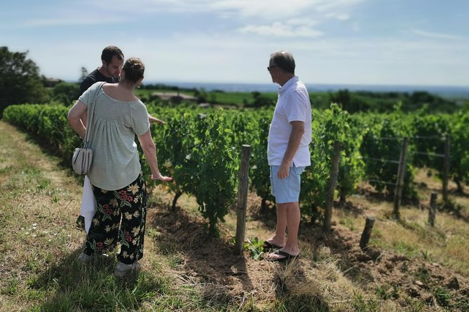 Beaujolais is the most sensual vineyard in France !<br>Let's go to the north of Lyon to discover a beautiful and authentic hilly region that produces a light, fruity and gourmet wine. <br>